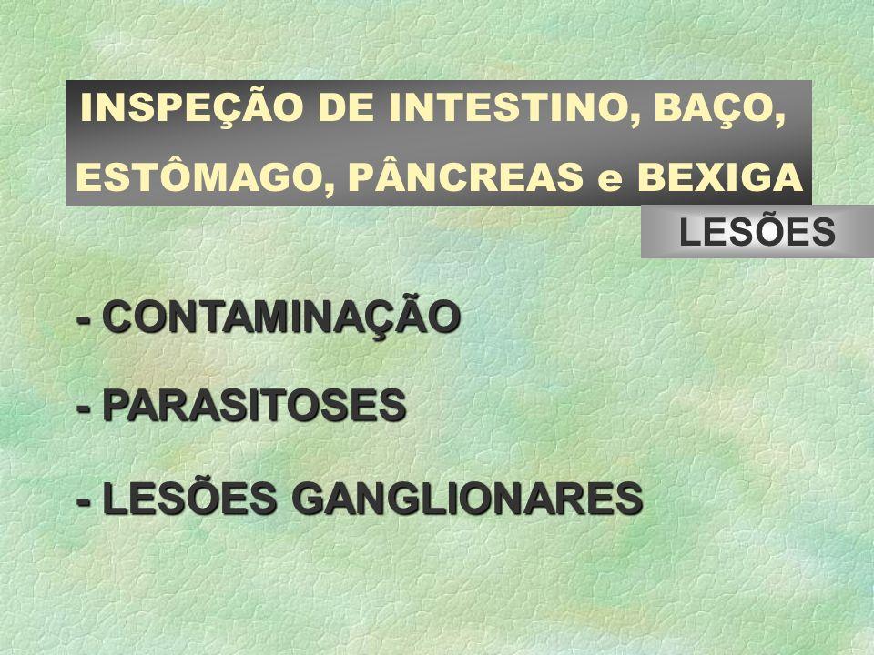 - CONTAMINAÇÃO - PARASITOSES - LESÕES GANGLIONARES