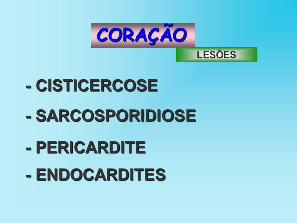 CORAÇÃO - CISTICERCOSE - SARCOSPORIDIOSE - PERICARDITE - ENDOCARDITES