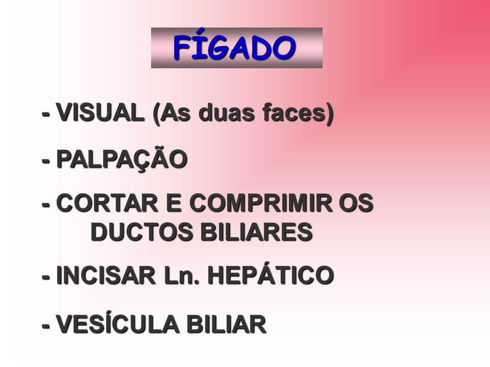 FÍGADO - VISUAL (As duas faces) - PALPAÇÃO - CORTAR E COMPRIMIR OS