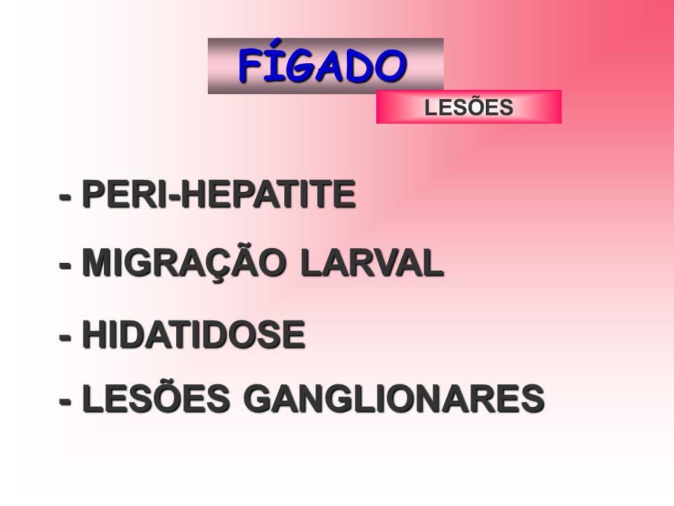 FÍGADO - PERI-HEPATITE - MIGRAÇÃO LARVAL - HIDATIDOSE