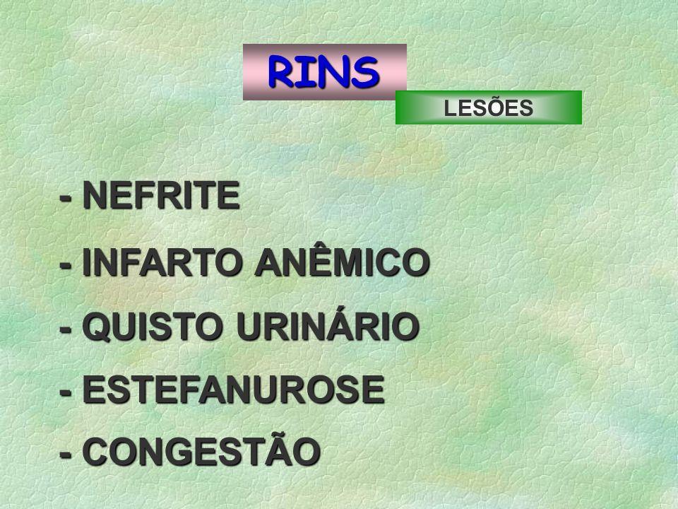 RINS - NEFRITE - INFARTO ANÊMICO - QUISTO URINÁRIO - ESTEFANUROSE