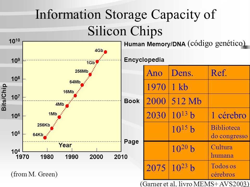 Information Storage Capacity of Silicon Chips