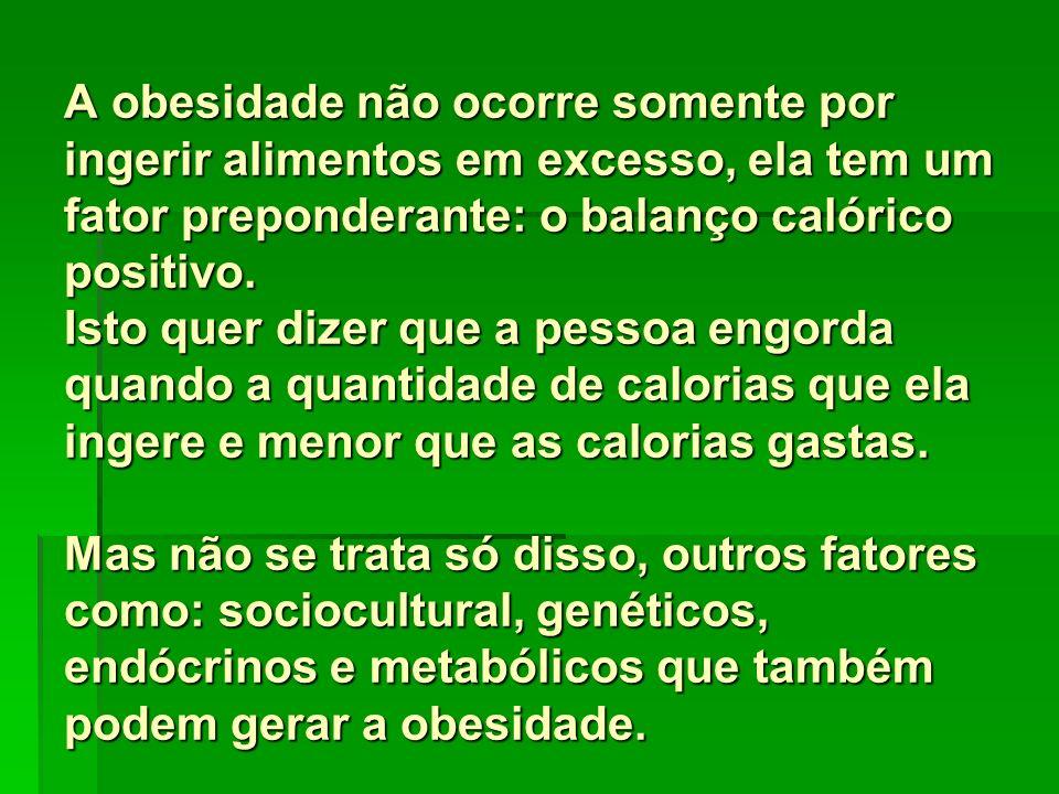 A obesidade não ocorre somente por ingerir alimentos em excesso, ela tem um fator preponderante: o balanço calórico positivo.