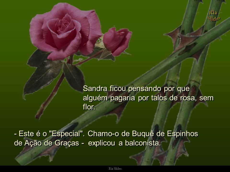 Sandra ficou pensando por que alguém pagaria por talos de rosa, sem flor.