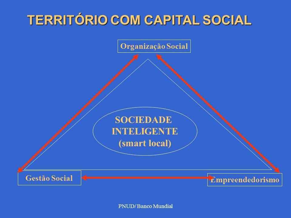 PORQUE CAPITAL SOCIAL 1- teia de relações - serviços, organizações públicas e iniciativas empresariais.