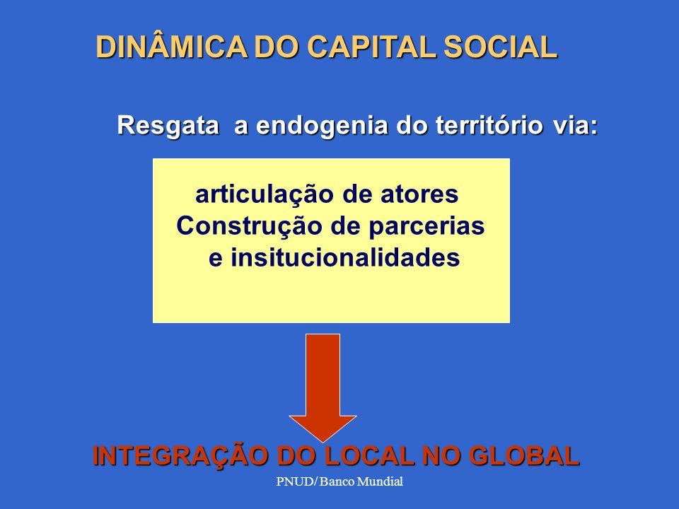 CAPITAL HUMANO E CAPITAL SOCIAL