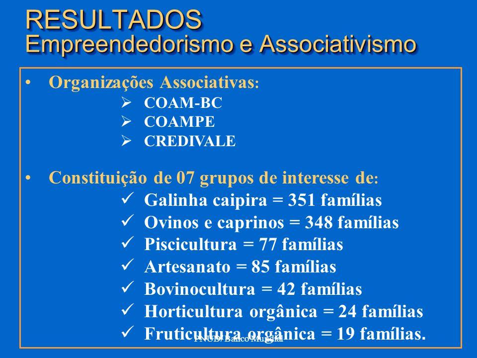 ANIMADORES DO PROCESSO