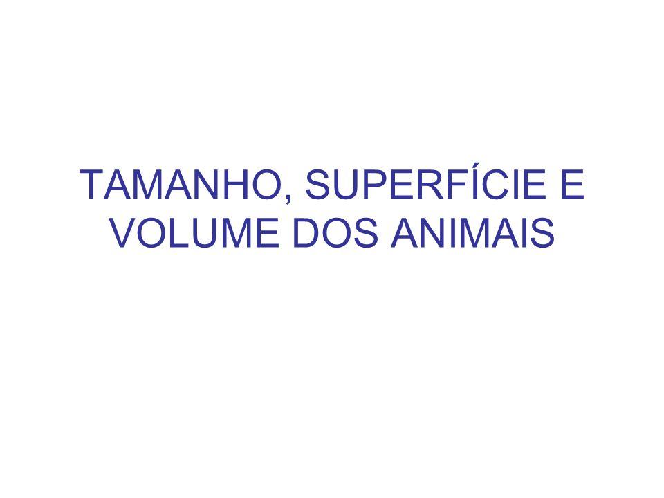 TAMANHO, SUPERFÍCIE E VOLUME DOS ANIMAIS
