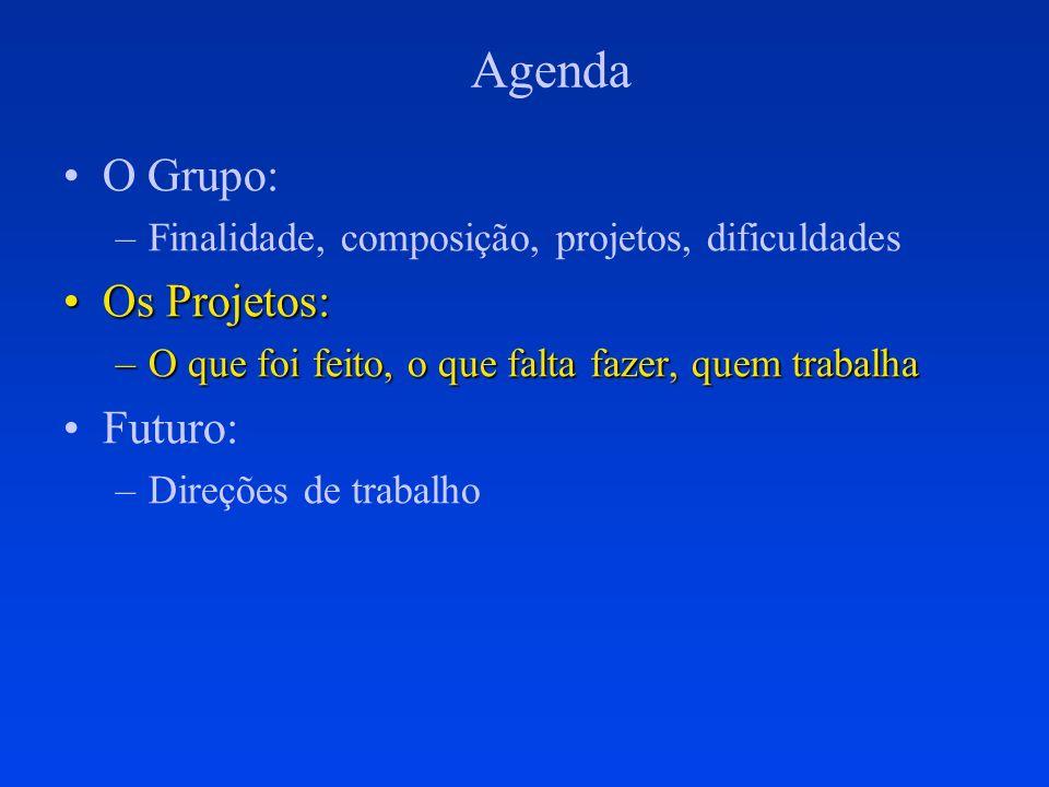 Agenda O Grupo: Os Projetos: Futuro: