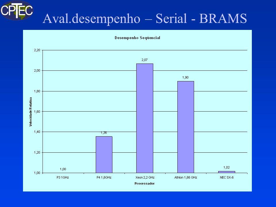Aval.desempenho – Serial - BRAMS