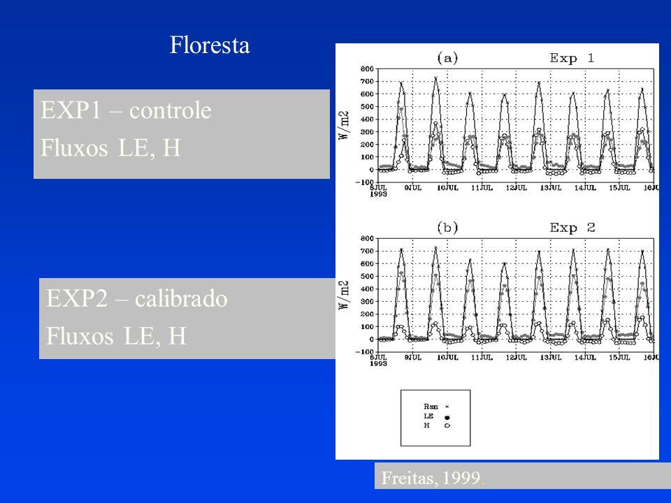 Floresta EXP1 – controle Fluxos LE, H EXP2 – calibrado Fluxos LE, H