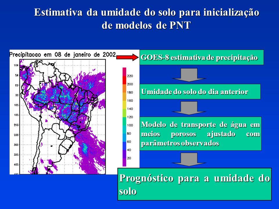 Estimativa da umidade do solo para inicialização de modelos de PNT