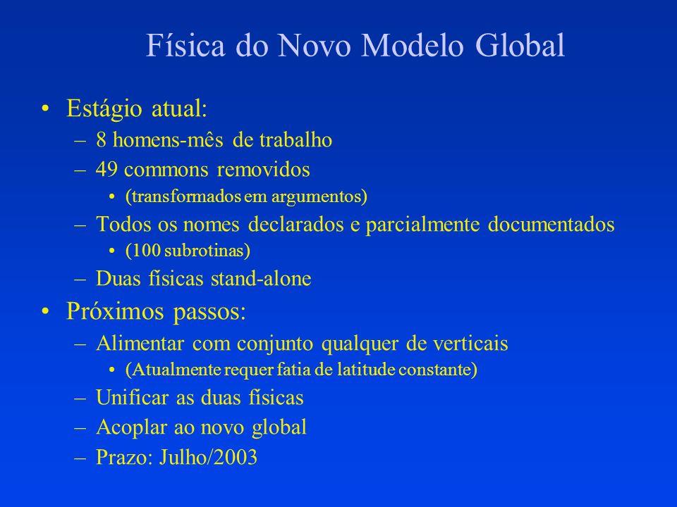 Física do Novo Modelo Global