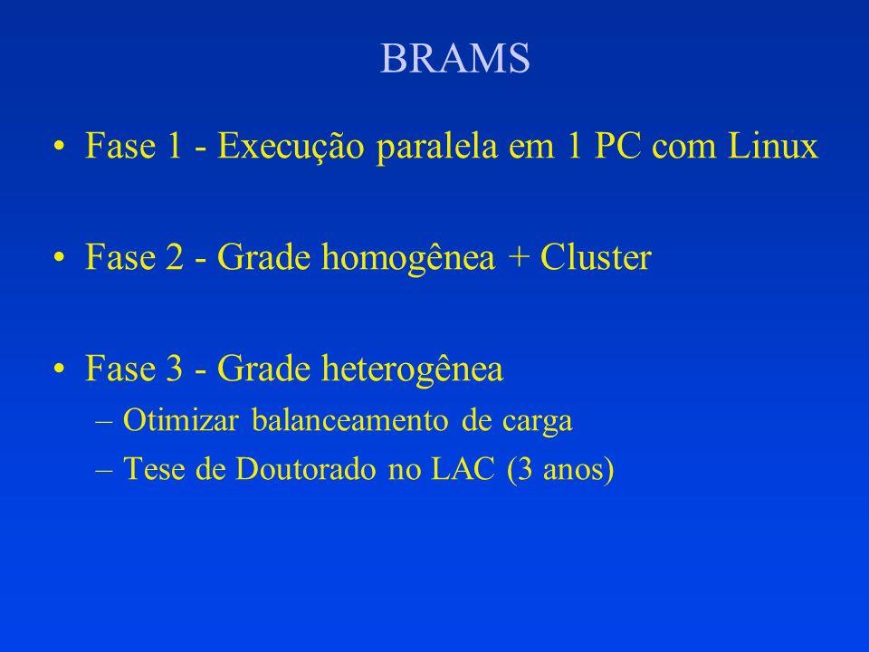 BRAMS Fase 1 - Execução paralela em 1 PC com Linux