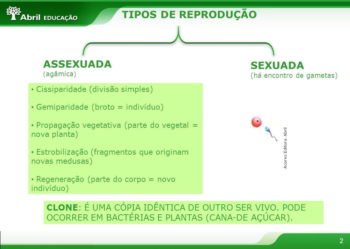 TIPOS DE REPRODUÇÃO ASSEXUADA SEXUADA