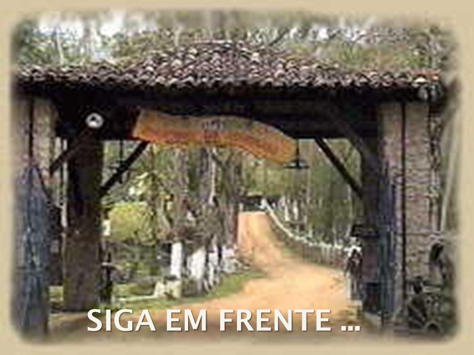 SIGA EM FRENTE ...