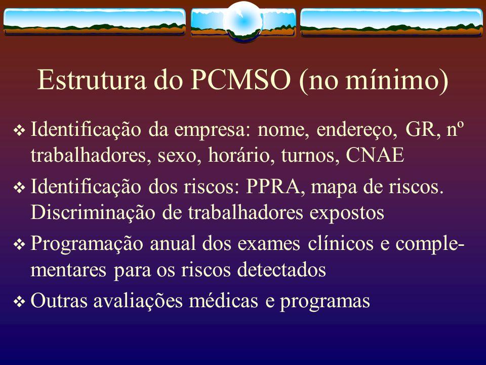 Estrutura do PCMSO (no mínimo)