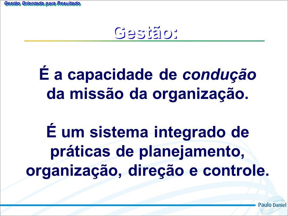 Gestão: É a capacidade de condução da missão da organização.