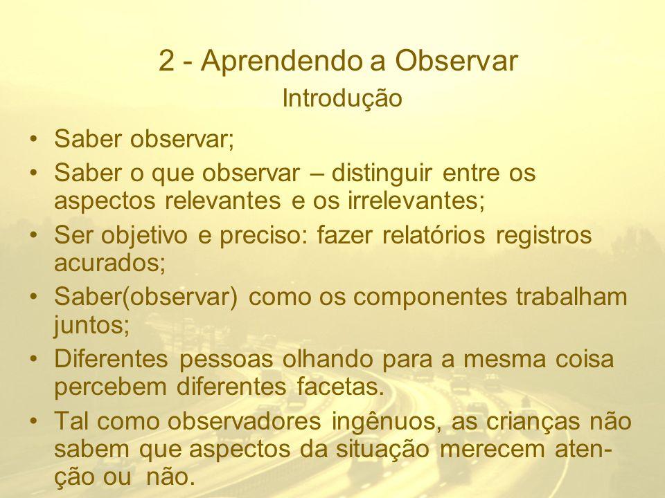 2 - Aprendendo a Observar Introdução
