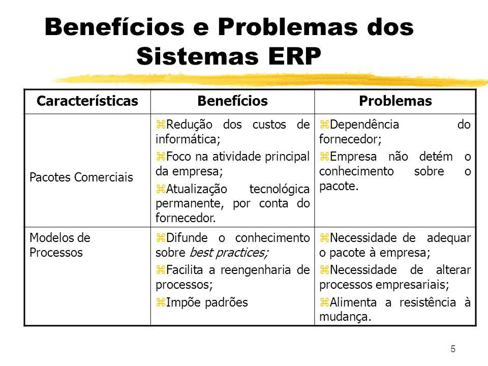Benefícios e Problemas dos Sistemas ERP