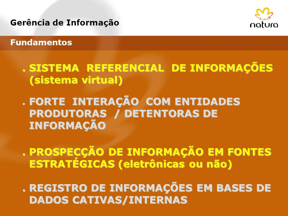 . SISTEMA REFERENCIAL DE INFORMAÇÕES (sistema virtual)