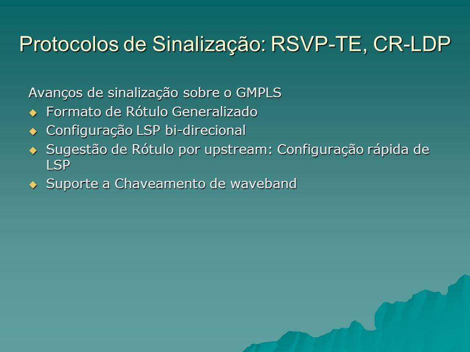Protocolos de Sinalização: RSVP-TE, CR-LDP