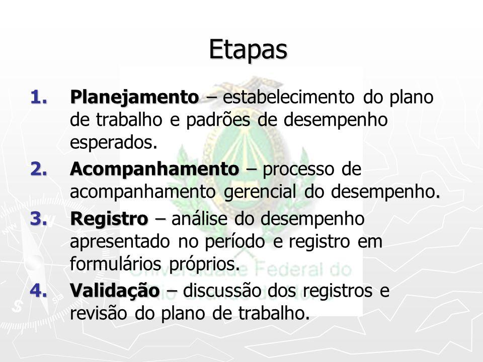Etapas Planejamento – estabelecimento do plano de trabalho e padrões de desempenho esperados.
