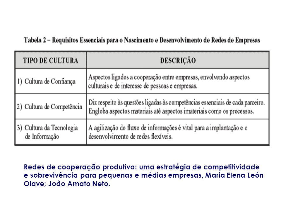 Redes de cooperação produtiva: uma estratégia de competitividade e sobrevivência para pequenas e médias empresas, Maria Elena León Olave; João Amato Neto.