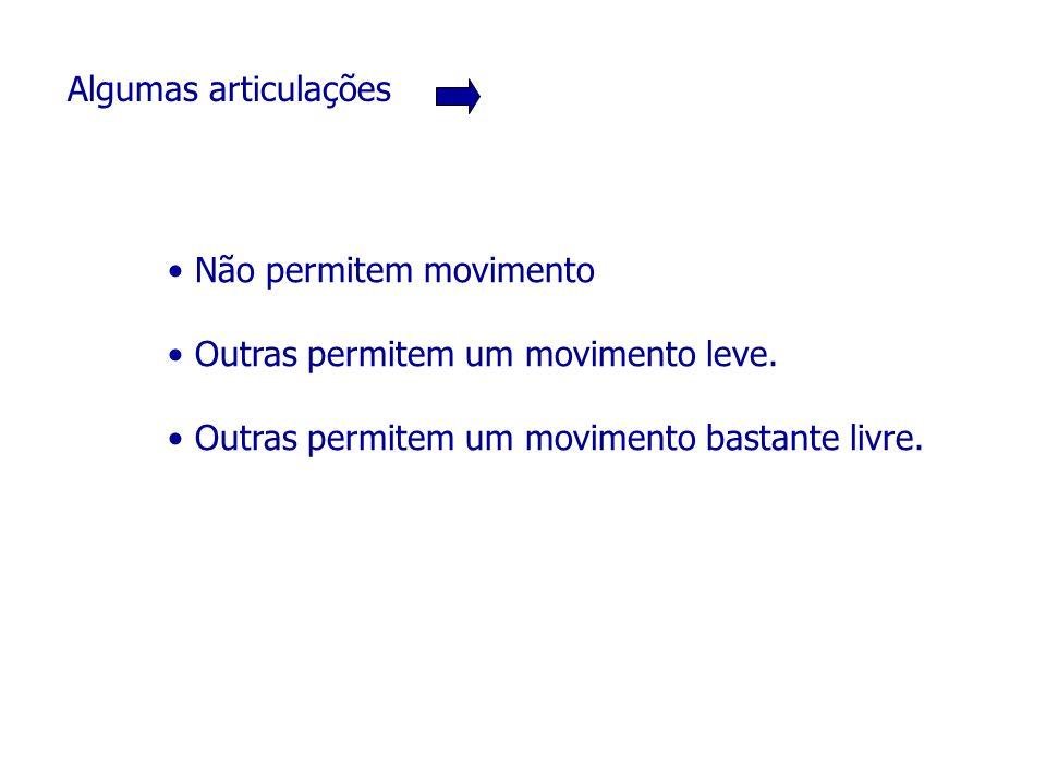 Algumas articulações Não permitem movimento. Outras permitem um movimento leve.