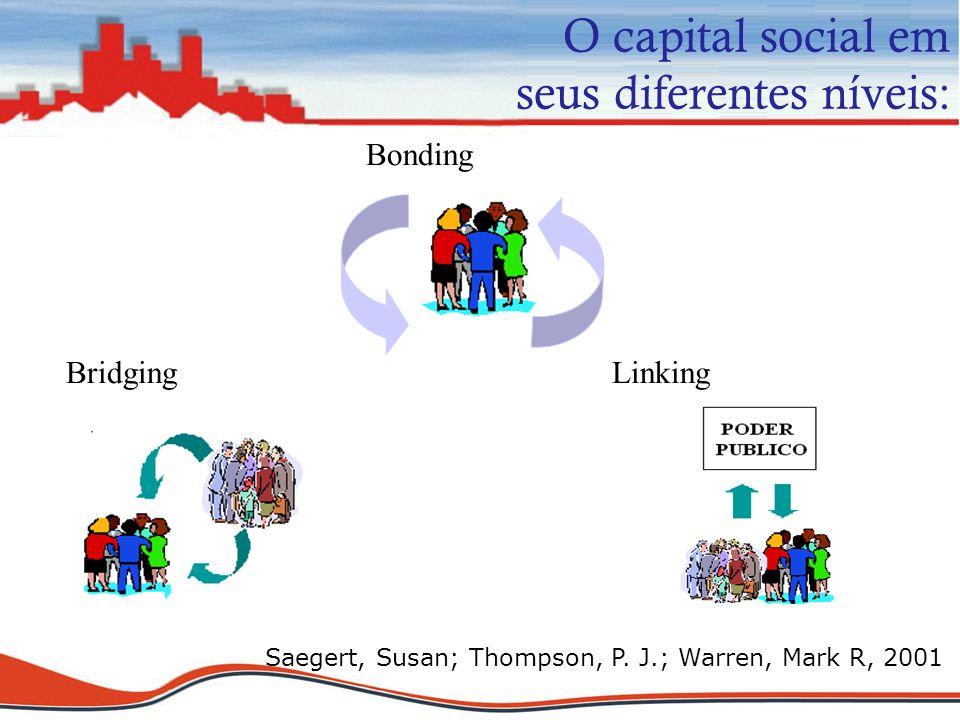 O capital social em seus diferentes níveis: