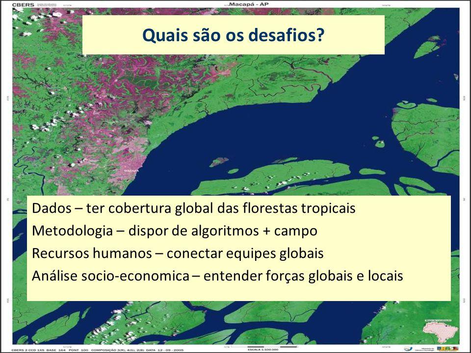 Quais são os desafios Dados – ter cobertura global das florestas tropicais. Metodologia – dispor de algoritmos + campo.