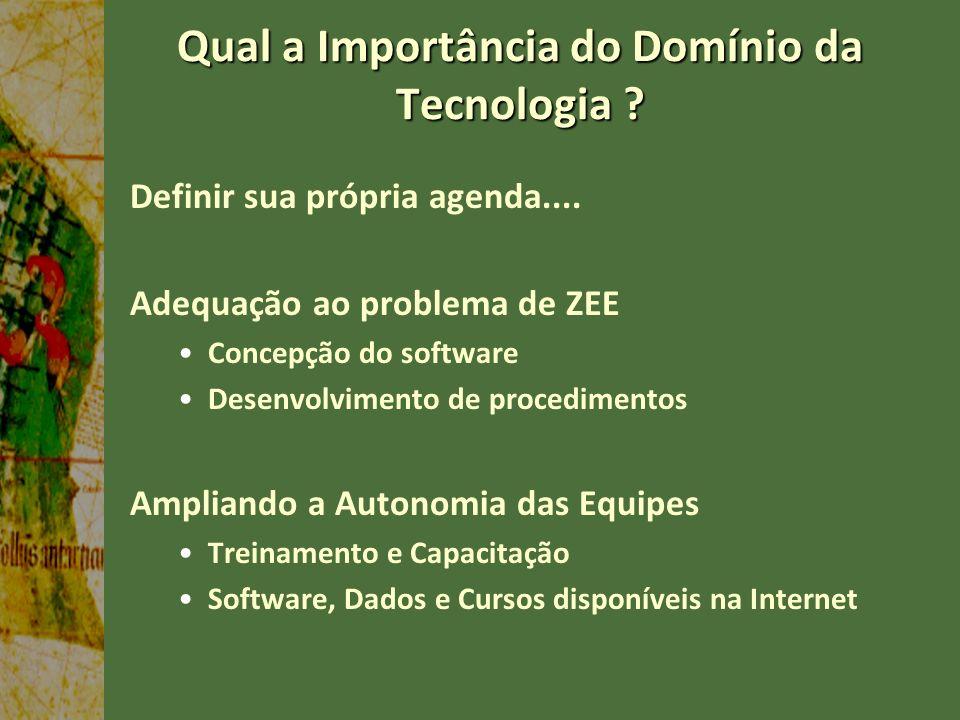 Qual a Importância do Domínio da Tecnologia