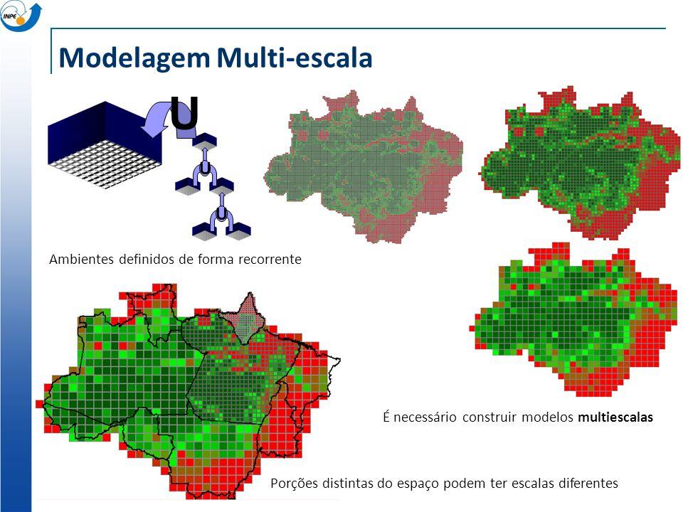 Modelagem Multi-escala