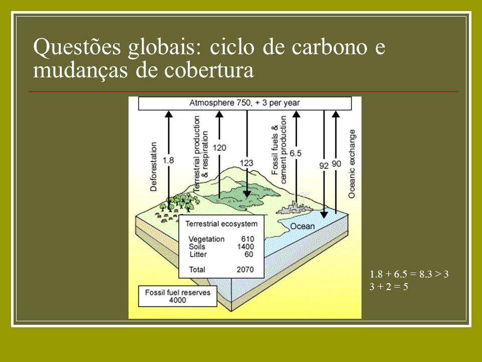Questões globais: ciclo de carbono e mudanças de cobertura