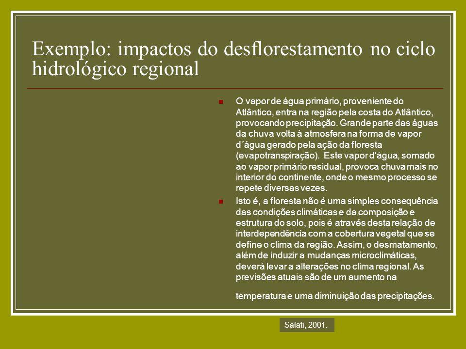 Exemplo: impactos do desflorestamento no ciclo hidrológico regional