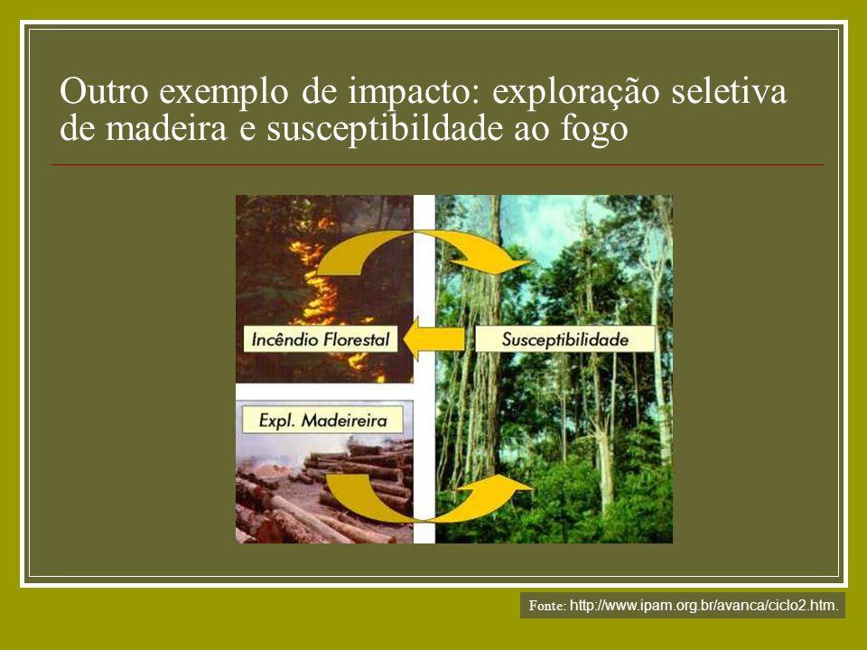 Outro exemplo de impacto: exploração seletiva de madeira e susceptibildade ao fogo