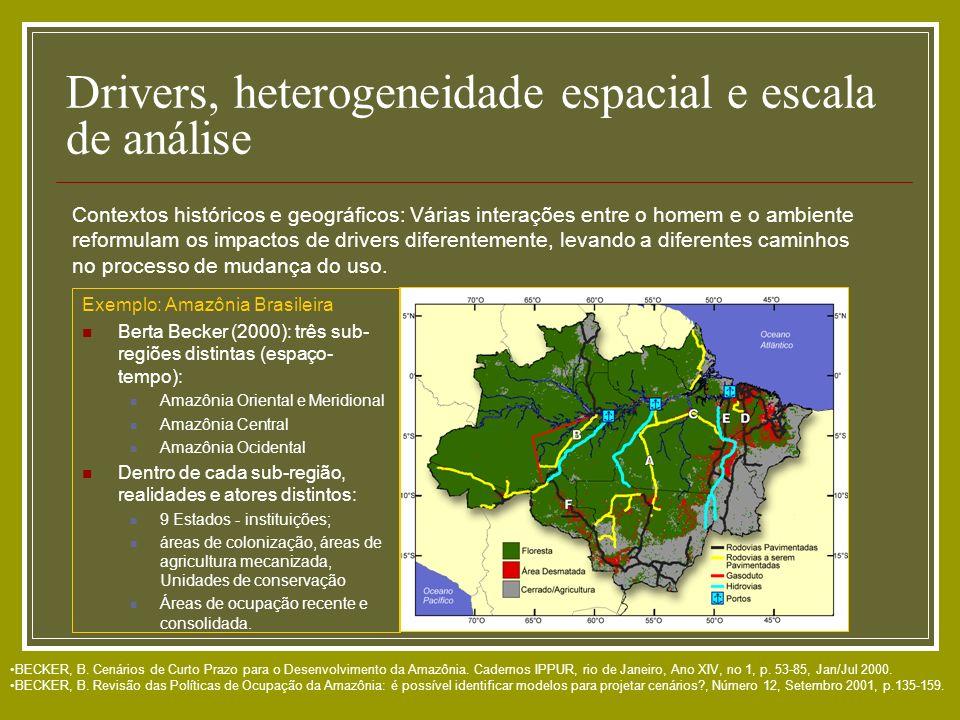 Drivers, heterogeneidade espacial e escala de análise