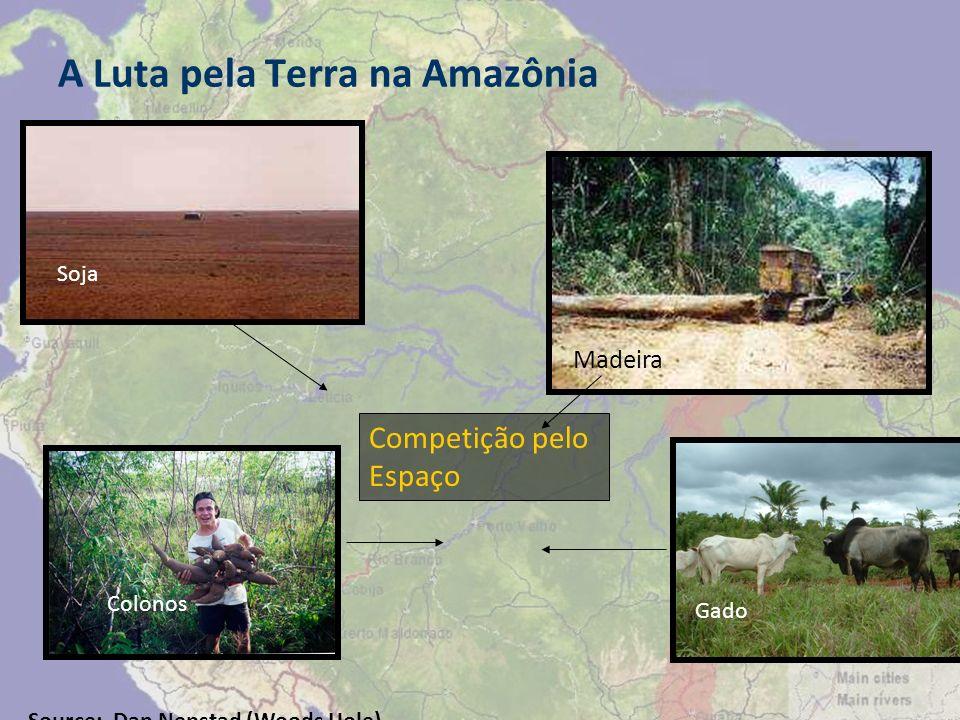 A Luta pela Terra na Amazônia