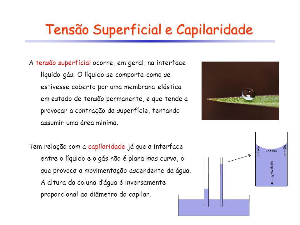 Tensão Superficial e Capilaridade