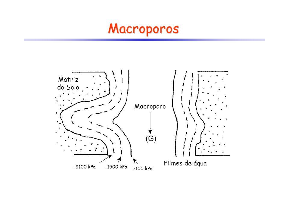 Macroporos Matriz do Solo Macroporo Filmes de água -3100 kPa -1500 kPa