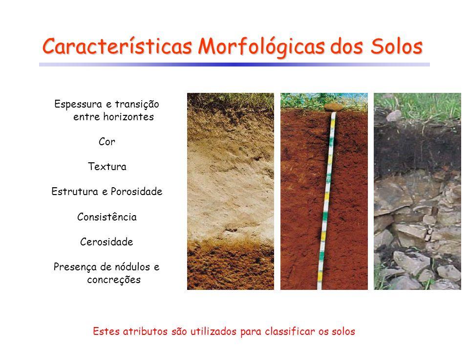 Características Morfológicas dos Solos