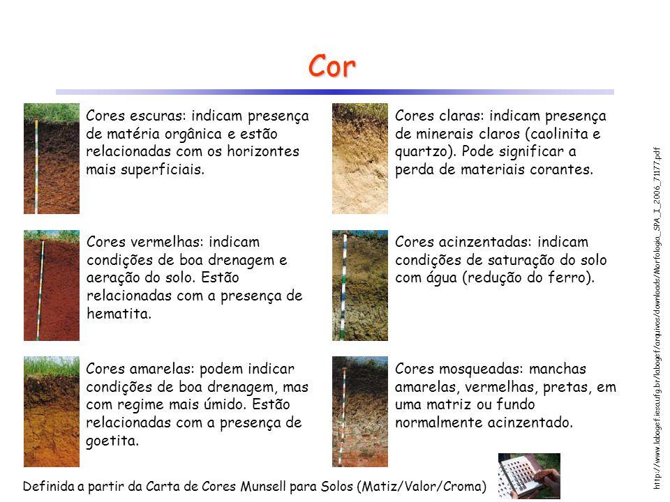 Cor Cores escuras: indicam presença de matéria orgânica e estão relacionadas com os horizontes mais superficiais.