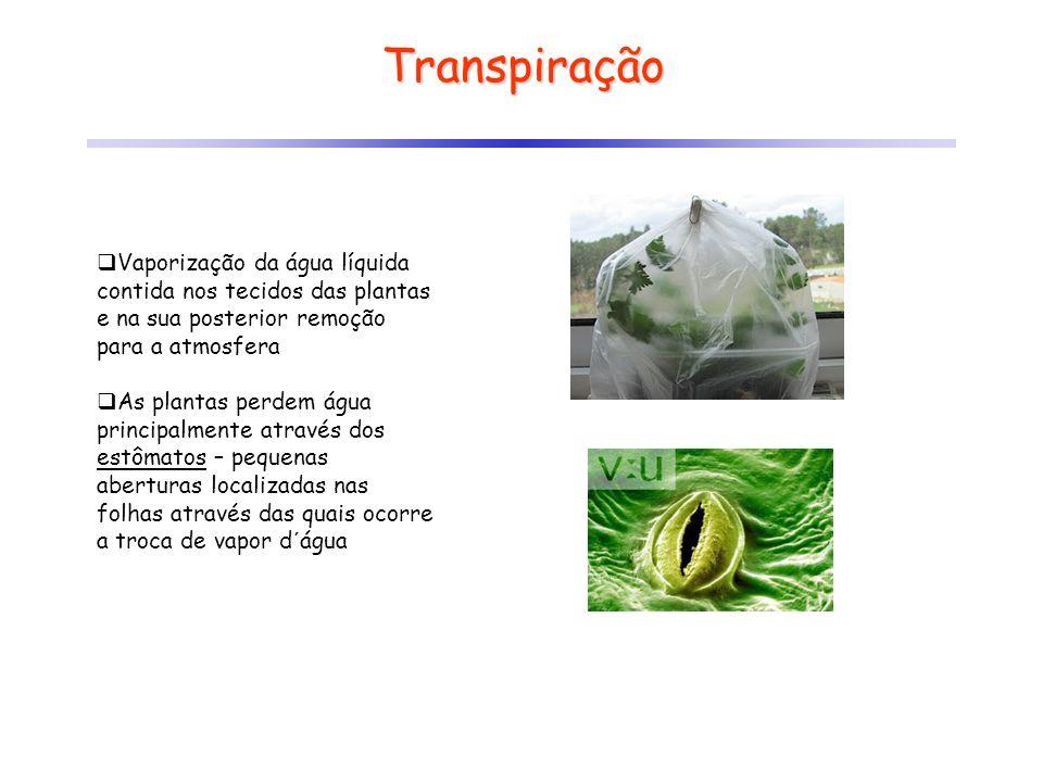 Transpiração Vaporização da água líquida contida nos tecidos das plantas e na sua posterior remoção para a atmosfera.