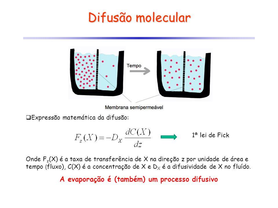 A evaporação é (também) um processo difusivo