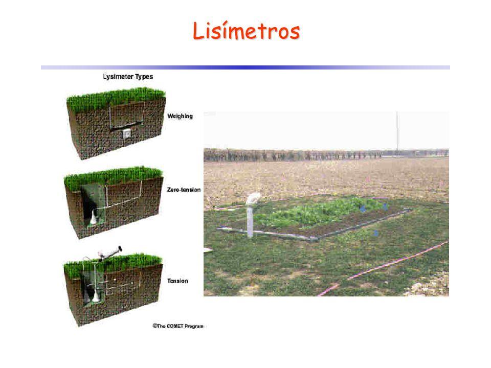 Lisímetros