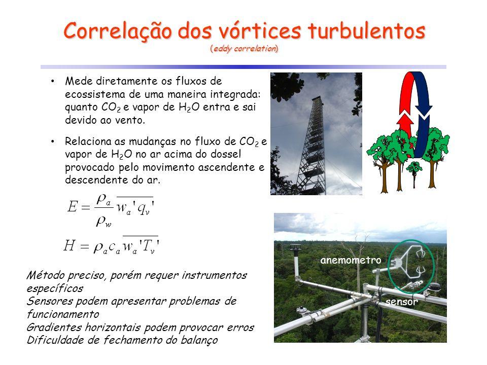 Correlação dos vórtices turbulentos
