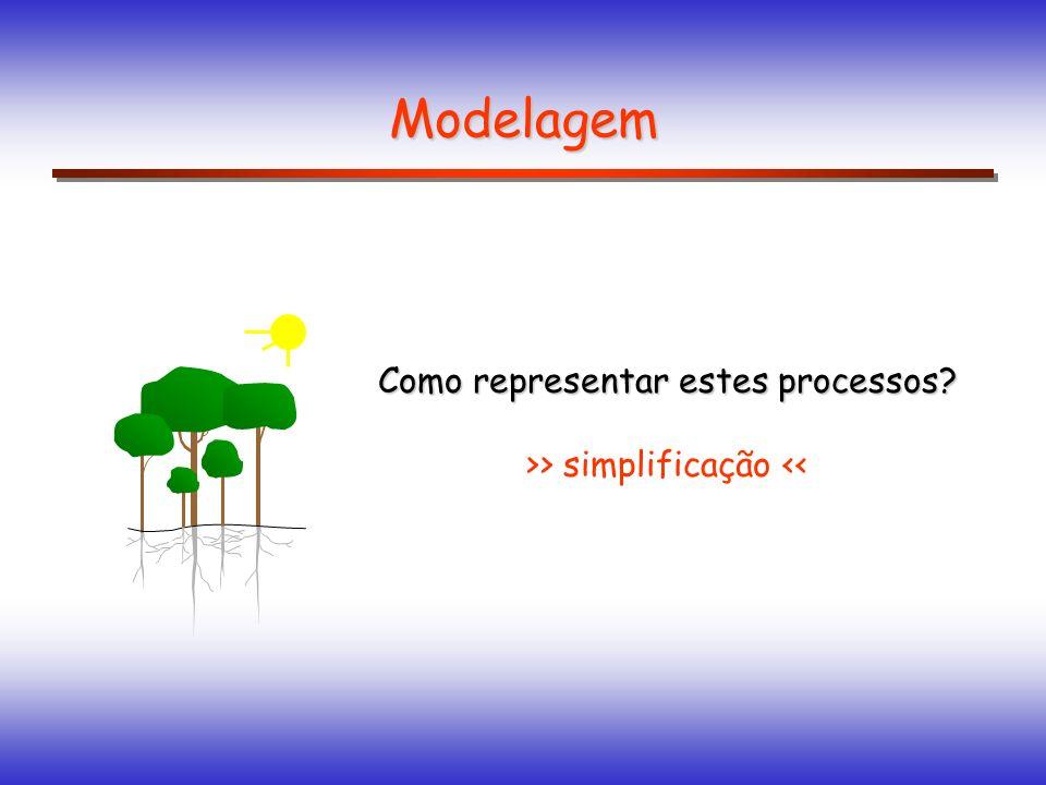 Modelagem Como representar estes processos