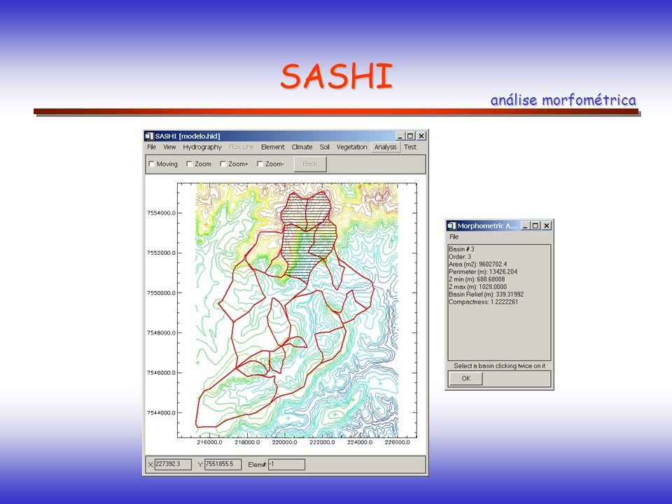 SASHI análise morfométrica