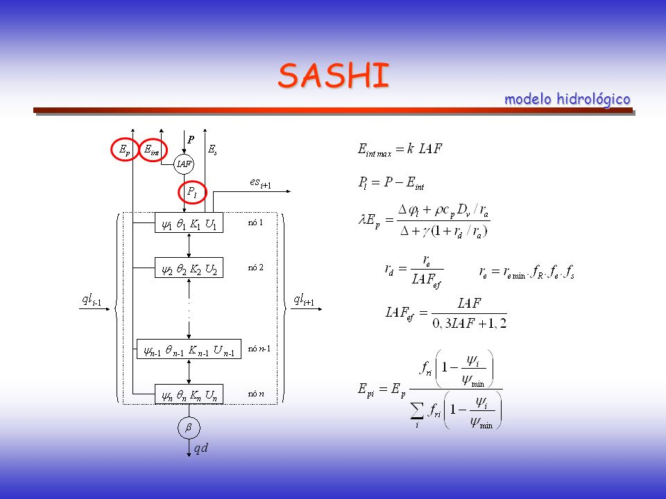 SASHI modelo hidrológico qd