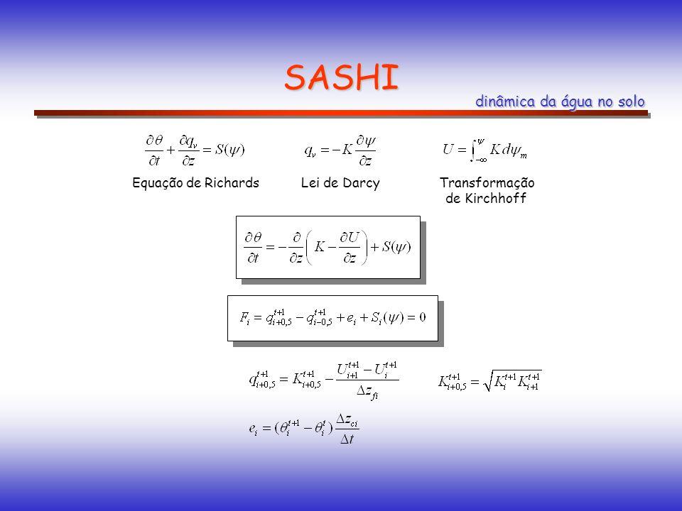 SASHI dinâmica da água no solo Equação de Richards Lei de Darcy